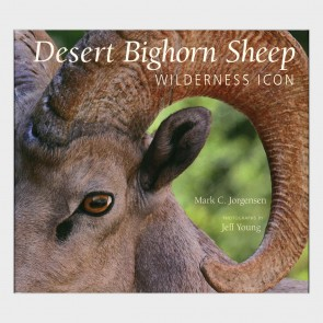 Desert Bighorn Sheep: Wilderness Icon by Mark C. Jorgensen