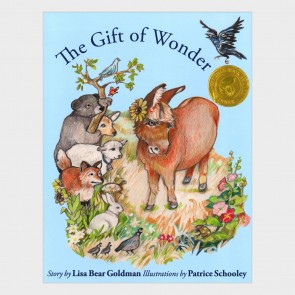 The Gift of Wonder - Illustrated Storybook