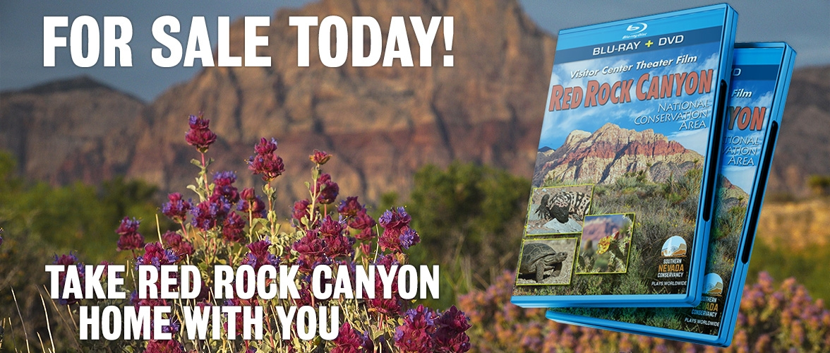 Own the Red Rock Canyon Visitor Center Film Today!